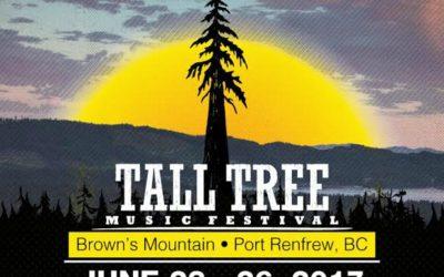 Tall Tree Festival 2017